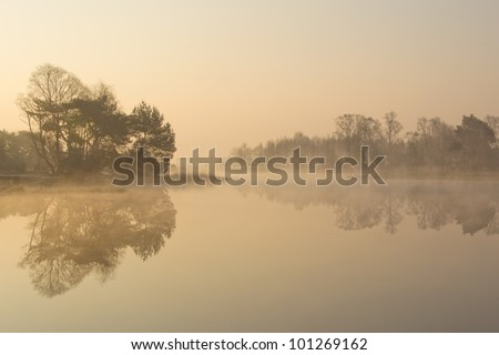 """A foggy sunrise on the """"Strabrechtse Heide"""", a nature reserve near Eindhoven, the Netherlands. - stock photo"""