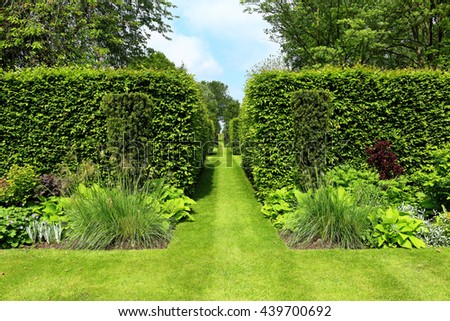 A Formal Landscape garden with grass path between shaped hedges