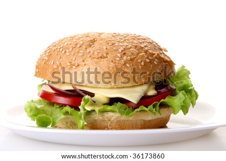 a fresh hamburger with onion and tomatoes - stock photo