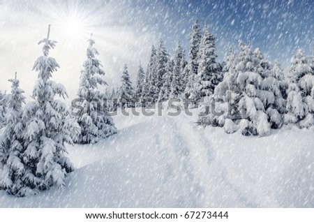 A frosty and sun day is in mountains - stock photo