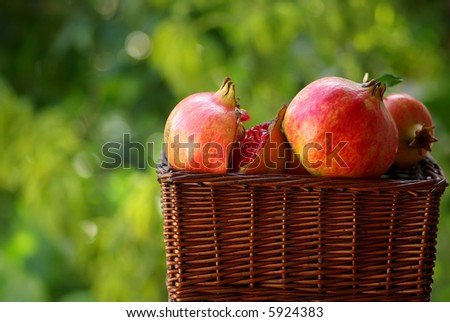 A full basket with red fruits of the Autumn: Pomegranates - stock photo