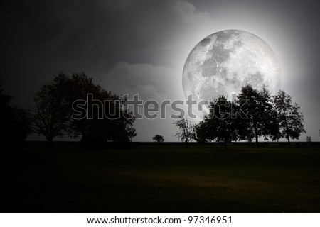A full moon shining bright over the silhouette of trees in a park at night. - stock photo