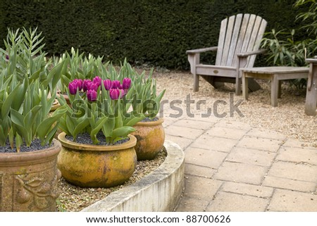 A garden scene with a curved wall, patio, wooden garden furniture and some flower pots with tulips in them. - stock photo