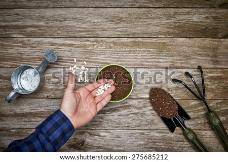 a gardener planting seeds in a pot of soil - stock photo