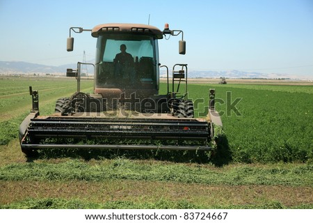 A genuine combine harvester cutting a field of alfalfa in a field in central california on a summer day. butterflies are flying all around in the air as the smell of fresh alfafa fills the senses - stock photo