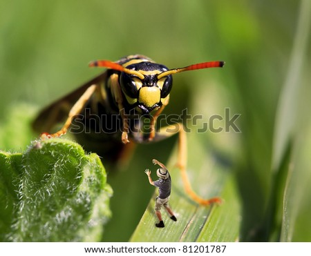 a giant wasp attack an human explorer - stock photo