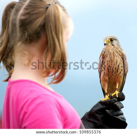 a girl holding a hawk - stock photo