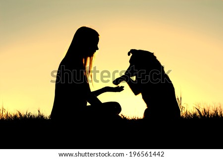 a girl is sitting outside in the grass, shaking hands with her German Shepherd dog, silhouetted against the sunsetting sky - stock photo