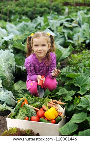 A girl with a box of vegetables in the kitchen-garden - stock photo