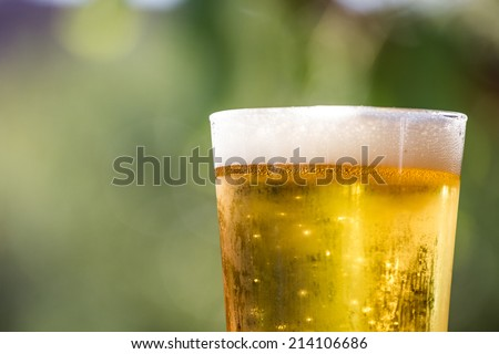 A glass of beer.