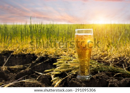a glass of cold beer - stock photo