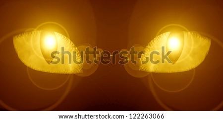 A glowing feline eye in the dark - stock photo