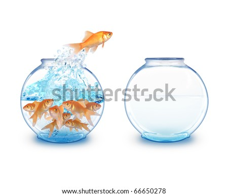 A gold fish is jumping over to an empty fishbowl for more room to expand. There is a white background. - stock photo