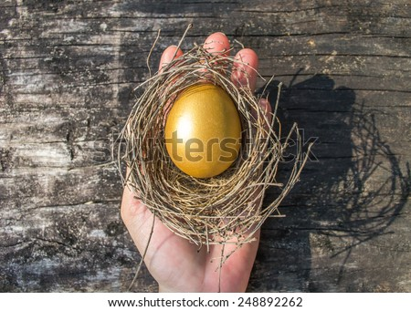 A golden egg in a hand: A golden egg opportunity concept of wealth and a chance to be rich  - stock photo