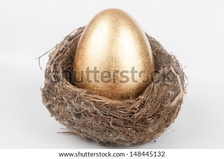 A golden egg in the bird nest - stock photo