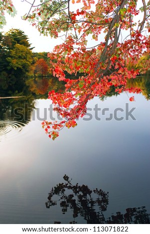 A gorgeous autumn scene with a lake and trees showing the bright colors of fall in New England.