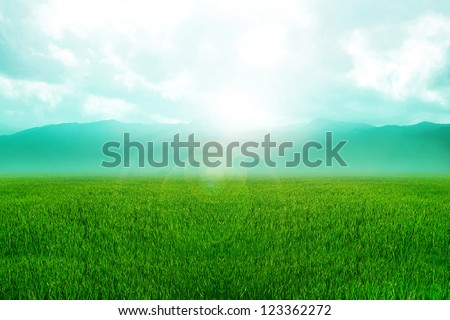 A grass land and mountains on the background - stock photo