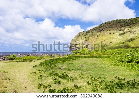 A grassy field along a tropical beach in Hawaii highlights the lush nature of the islands driven in part by plentiful rainfall.B - stock photo