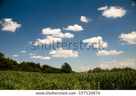 A grassy field underneath a partly cloudy sky. - stock photo