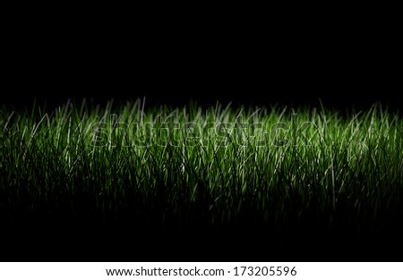 A grassy lawn seen at night, black background - stock photo