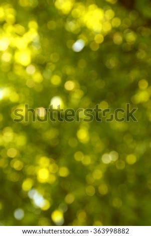 a green background of grass