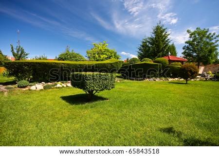 A green hedge - garden - Slovakia, Europe - stock photo