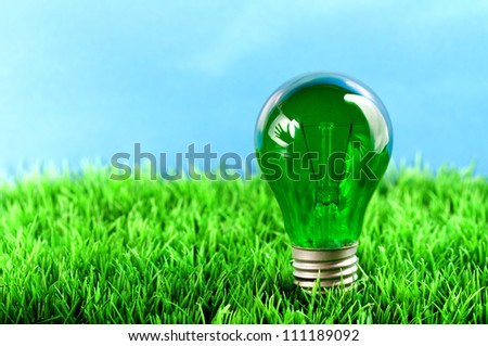 A green light bulb which is in the meadow. In the reflection yo can see a hand.