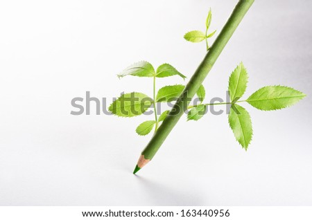 A green pencil with leaves growing on it - stock photo