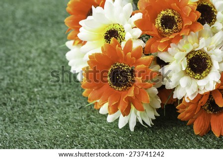 A group beautiful flowers on the green lawn. - stock photo
