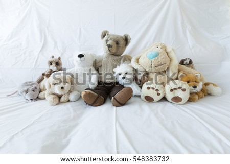 A group of cute stuffed animals on a white couch representing diversity, multiculturalism and inclusion