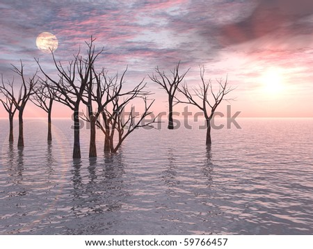 A group of dead trees standing in water forms a stark contrast to a postcard-perfect pink sunset. - stock photo