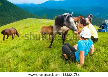a group of friends, mountain tourists resting on the grass among the flocks of wild horses and their calves against the blue sky.  - stock photo