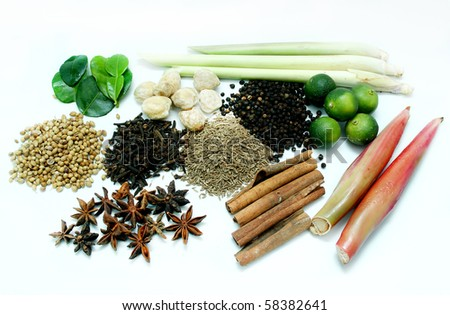 a group of herbs - stock photo