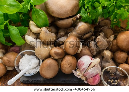 A group of mushrooms and other ingredients - stock photo