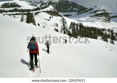 A group of people who ascend the mountain foot to the snowshoe - stock photo