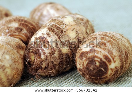 a group of taro on burlap  - stock photo