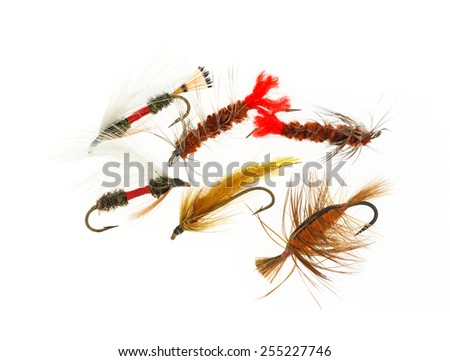 A group of tied fly fishing flies on a white background. - stock photo
