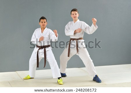 a group of young, successful and multi ethical karate show knowledge - stock photo