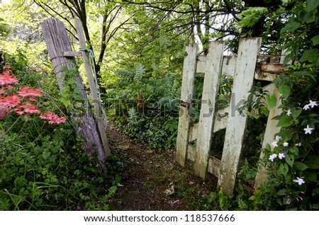 A grunge wooden door. vintage gate - entrance of garden. - stock photo