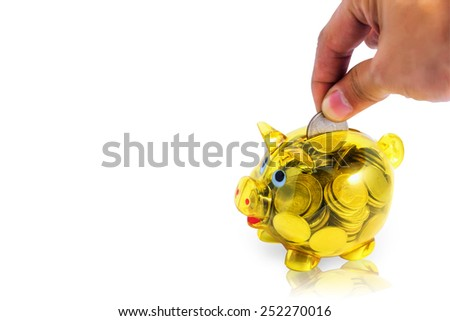 A hand with coin Piggy Bank on a white background reflection (with clipping path) - stock photo