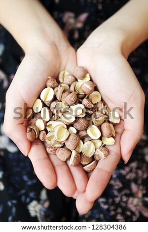 A handful of dried lotus seeds - stock photo