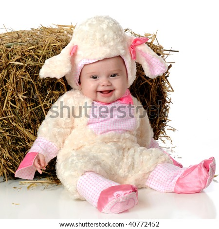 A happy baby girl in a sheep's outfit, sitting by a bale of hay.  Isolated on white. - stock photo