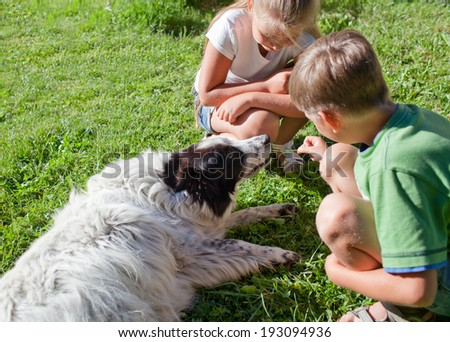 A happy children and their dog playing in the grass - stock photo