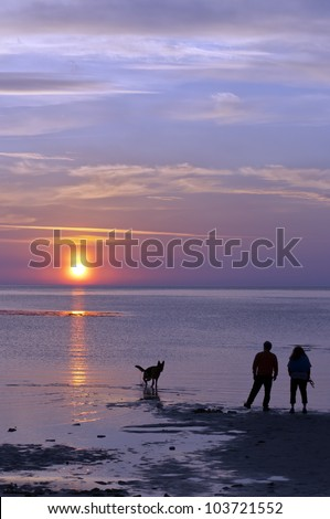 A happy couple take their dog for a walk on the beach against the backdrop of a romantic sunset - stock photo