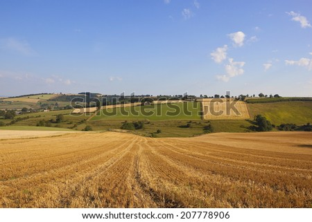 a harvest time landscape in the yorkshire wolds england with patchwork fields hills and hedgerows under a blue sky in summer - stock photo