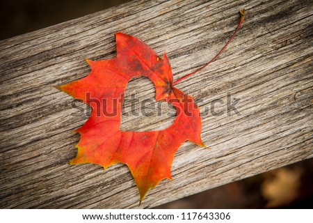 A heart in an autumn leaf on a background of grained wood.