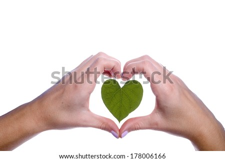 A heartshaped leaf outlined by a girls hands. - stock photo