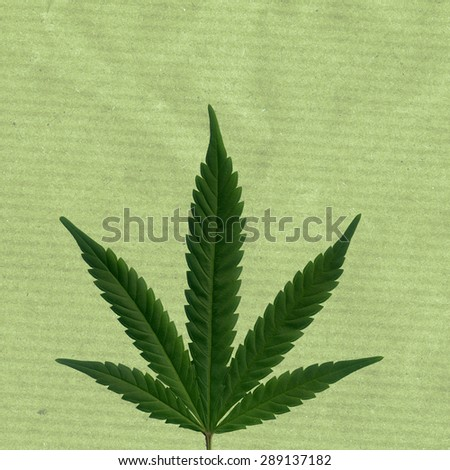 A hemp leave with colored brown paper