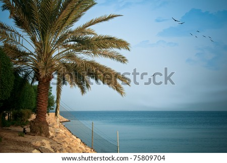 A high-resolution image of a beautiful seascape found at al-Khobar, Saudi Arabia. - stock photo