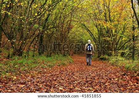 A hiker in the woods - stock photo